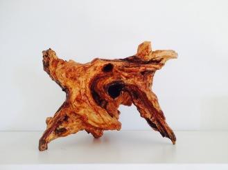 Wild wood sculpture (with Minu Agarwal)